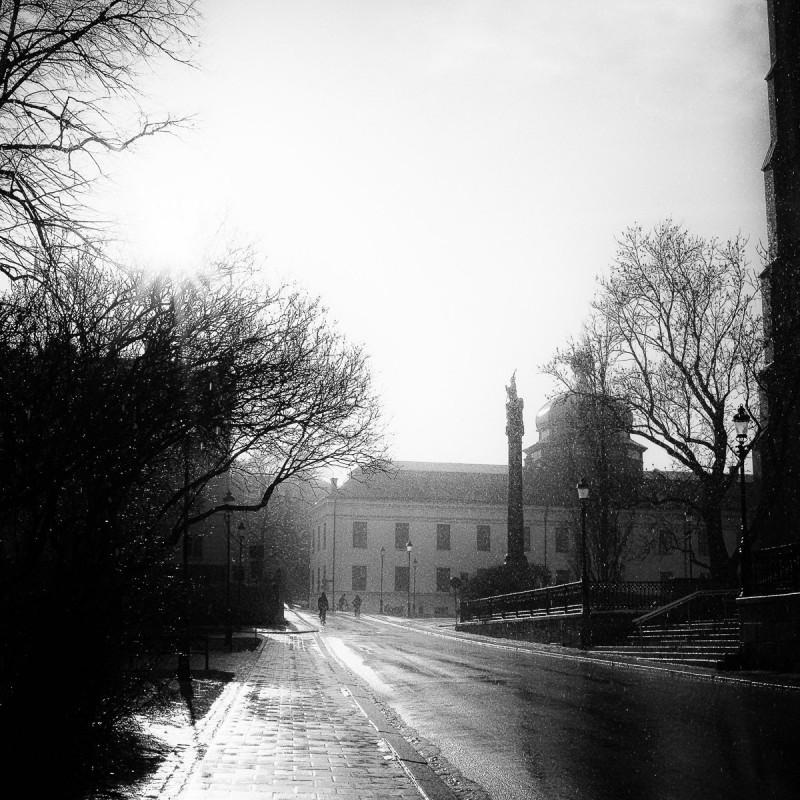 Uppsalavår