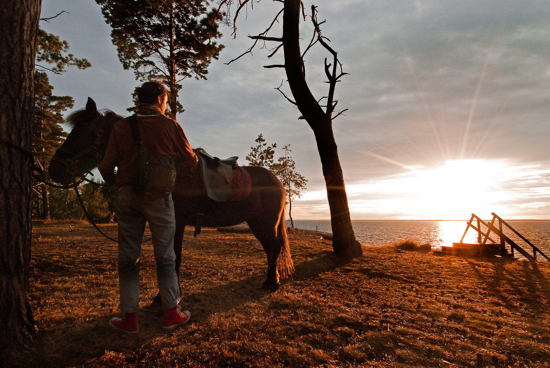 The boy and his horse