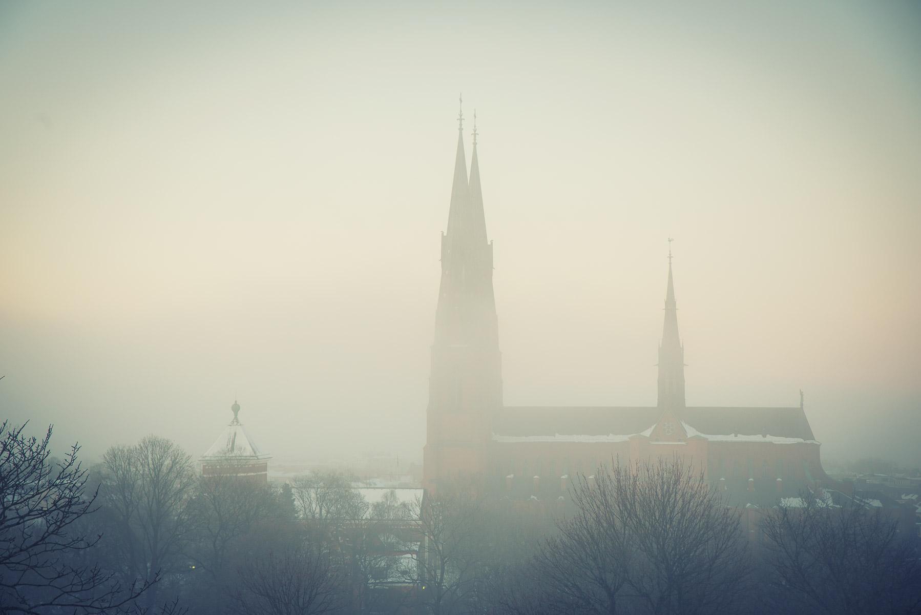 Uppsala winter