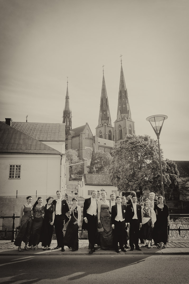 Vårbal i Uppsala 2011